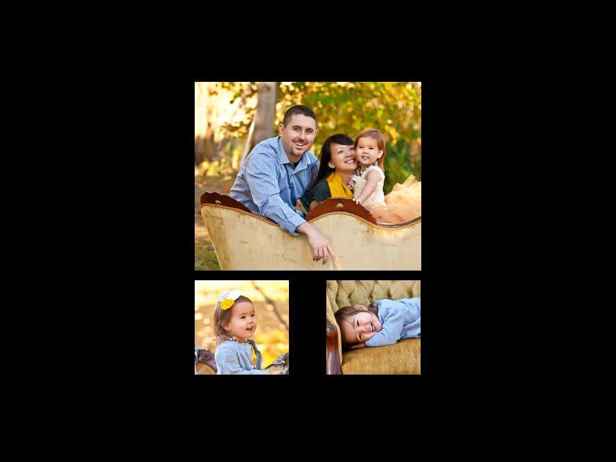 Premier Family Portraits