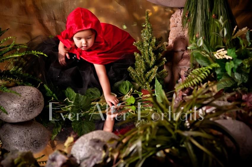 Family photographer northern va