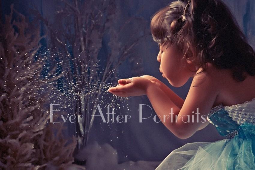 Frozen_Inspired_013