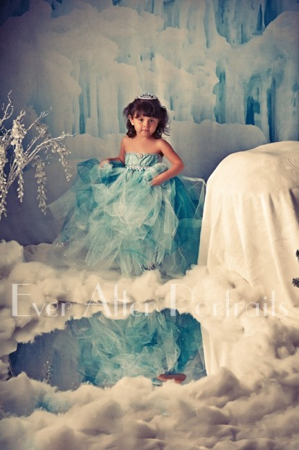 Frozen_Inspired_002