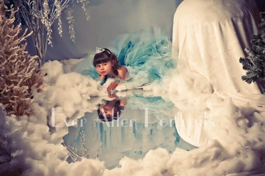 Frozen_Inspired_003