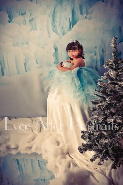 Frozen_Inspired_006